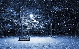 Snow-Storm-Park-Bench